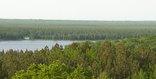 Savanna Portage SP02 2000x500