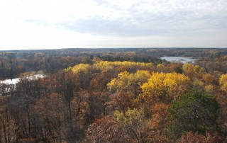 Itasca State Park from the fire tower