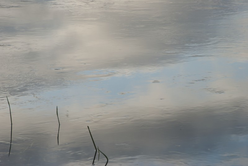 tn_Clouds reflected in water at sunset02