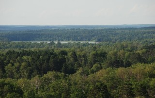 tn_Fire tower view08