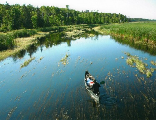 Picture of the Day: Paddling through the Headwaters