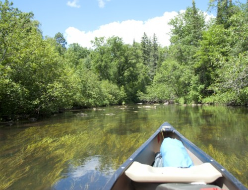 Paddling on the Mississippi River: 26 Water Trails from Easy to Challenging