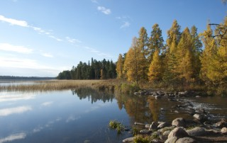 Mississippi River Headwaters in fall