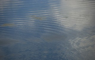 tn_Water ripples01