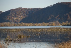 Trempealeau Wildlife Refuge (WI)